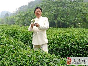 江西達達茶業有限責任公司