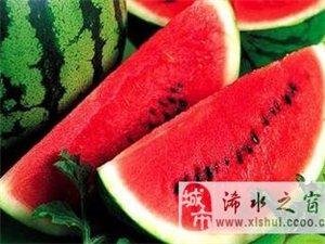 地里的西瓜熟了,炎热的夏天清凉你一下!!