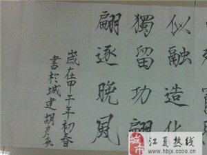 應屆畢業生求一份江夏藏龍島書法家教