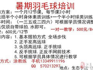 暑期羽毛球培训(江夏纸坊)