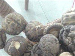 香菇木耳批發
