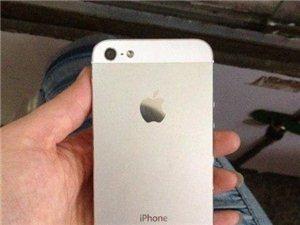 苹果5代 白色 正品行货