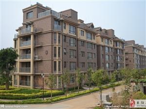 不计成本-盛世华城大户型5房比售楼部低2万元急售
