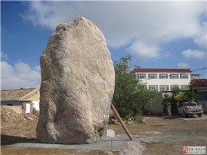 大型纯自然石