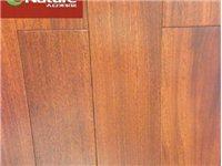 大自然地板保證正品純實木地板圓盤豆D4906P