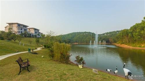 高州碧桂园实景图