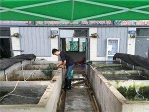 三峡物流园水产市场S-2902号门面出租