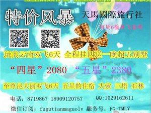 榆林-云南 雙飛6 新品