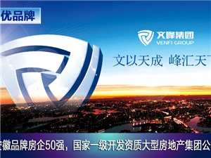霍邱汇峰国际城
