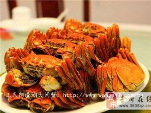 王氏陽澄湖大閘蟹臻品八只裝系列-臻品B套餐