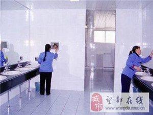 家庭单位日常开荒,清理玻璃幕外墙,专业清理烟道!