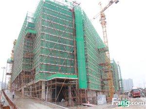 圣地・狮岭(国际)皮革皮具城6期