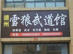 陵县雪狼武道培训机构