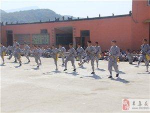 少林贵族武术学校招生报名开始