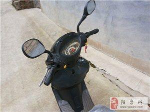 转让48V20A小鸟电动摩托车