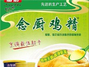 新加坡念厨食品(国际)有限公司招区域总经销