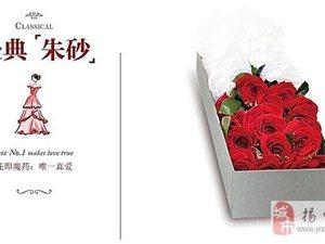 永生花整枝玫瑰保鲜花情人节求婚生日教师节枪炮礼盒