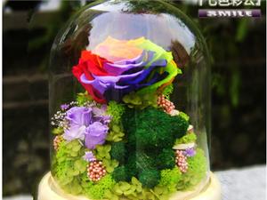 创意玻璃罩进口永生花玫瑰情人节生日教师节礼盒包邮