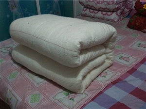 本店出售全新棉花被,棉絮,褥子。。。。。
