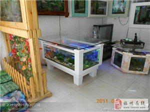 福州市清洗鱼缸 景致护理 鱼草养护 鱼缸保养 鱼缸