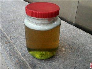 深山土蜂蜜出售