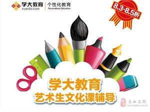 學大教育藝術生文化課輔導第一品牌
