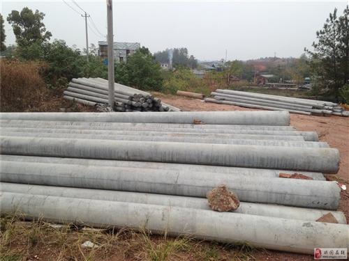 興國 海元水泥電桿 地錨 拉線 掛線 橫擔 出售