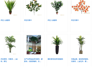 深圳市深林塑膠制品有限公司