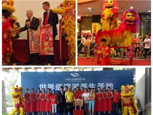 中国海南文扬龙狮团