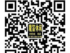 莘县魔笛休闲2014年又一批全新冬款现已全面登录!