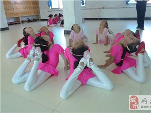 麻江縣舞精靈國標舞蹈藝術培訓中心歡迎您!