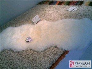 联邦宝达地毯爱家一楼