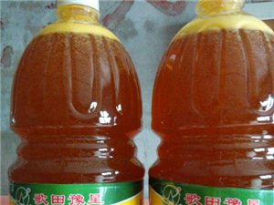 批发非转基因大豆油