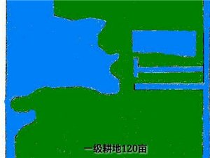 商河县沙河乡北私人独立耕地120亩对外出租