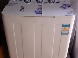全新品牌大容量双缸洗衣机有质保399元
