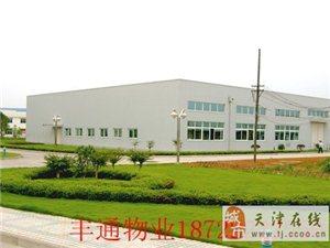 天津绿化养护 绿化种植18722222550