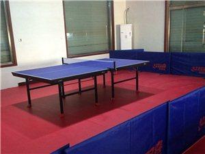 乒乓球专业培训社