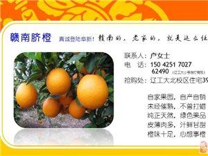 赣南脐橙(阜新市面唯一真品、正品)