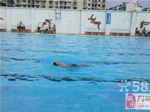 私人游泳教學培訓歡迎你