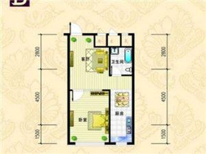 金城·丽都B户型 1室1厅1卫 面积66.89㎡