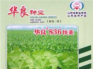 �R朐�A良�N�I出售大量玉米 �N子小���N子蔬菜�N子