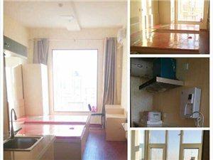 出租大学城威乐国际公寓