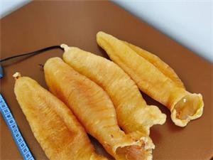 极品鮸鱼肚养生治胃病,冕鱼鱼肚