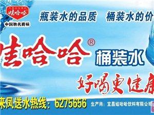 娃哈哈桶装水招来凤城内,龙山城内及各乡镇加盟商