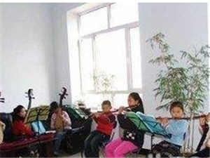 三亞微微藝術培訓中心,美聲,樂器培養中心,等級考試