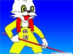 白猫保洁公司