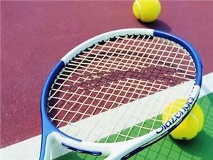 网球一对一培训、陪打、私教及多人班教学(专业公司)
