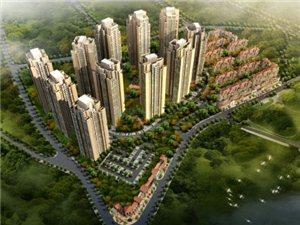中博-香山国际