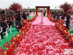 新时代婚庆礼仪公司