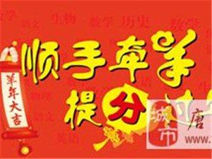 唐山學大教育為藝考生文化課規劃、最好的寒假補習班